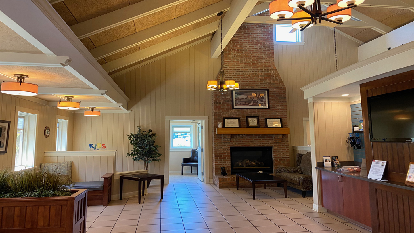 Center for Animal Health - Interior Fireplace