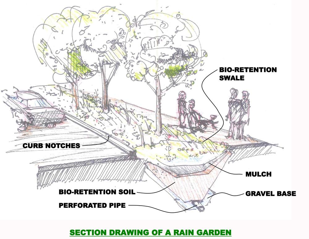 Rain Garden Diagram with Callouts